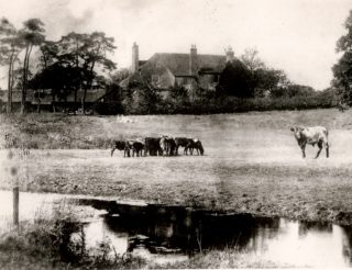 An old photo found at the Parsonage