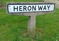Hatfield Street-name Signs