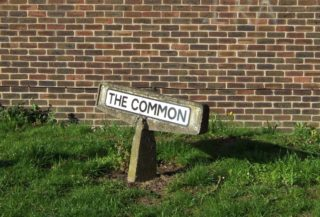 The Common | Phil Marris