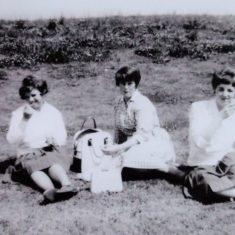 Janette Cook, Sylvia Blyther, Julie Bishop