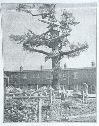 Debris in the branches of a tree in Hatfield | The Times, 5 November 1957 page 18