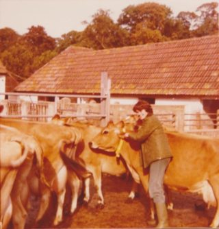 Mary Goss with Jersey Cows at Home Farm
